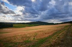 Approaching Storm (I) (Modesto Vega) Tags: cloud d600 field fullframe nikon nikond600 northdownsway saintmarthaonthehill sky storm surrey surreyhills unitedkingdom
