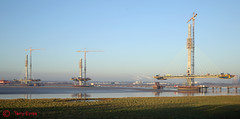 Mersey Gateway Bridge (Tel's Odds and Ends) Tags: merseygatewaybridge wiggisland