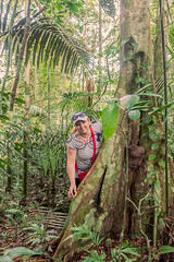 Happy Woman Standing Next To A Kapok Tree (kalypsoworldphotography) Tags: large branches crowded thorns leaves aphrodisiac hallucinogenic ayahuasca sacred trunk seed pods giant kapoktree ceiba pentandra cuyabeno ecosystem paradise adventure outdoors humidity yasuni southamerica ecuador tropical jungle green tree forest nature rainforest amazon amazonia background bush wilderness amazonian wild outdoor woman blonde biologist european caucasian cap happy young explore smile