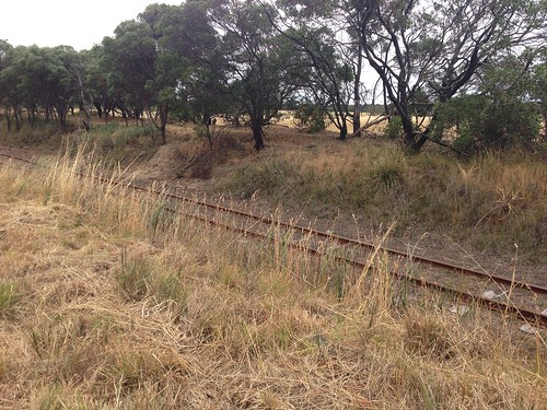 Bellarine Railway near Marcus Hill