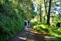 DAO-92091 寧靜,芬多精,森林浴,負離子,舒壓,呼吸,健康,舒適,空氣品質,見晴懷古步道,步道,森林鐵路,鐵道,鐵路,鐵軌,高山,山,樹木,樹林,森林,太平山森林遊樂區,太平山國家森林遊樂區,宜蘭太平山,太平山,宜蘭旅遊景點,宜蘭縣,大同鄉 (盈盈設計影像網 0932046950) Tags: 寧靜 芬多精 森林浴 負離子 舒壓 呼吸 健康 舒適 空氣品質 見晴懷古步道 步道 森林鐵路 鐵道 鐵路 鐵軌 高山 山 樹木 樹林 森林 太平山森林遊樂區 太平山國家森林遊樂區 宜蘭太平山 太平山 宜蘭旅遊景點 宜蘭縣 大同鄉 亞洲 台灣 taiwan 台灣圖片 台灣旅遊 台灣影像 台灣圖庫 台灣景點 台灣風景 數位攝影 風景攝影 風景 攝影 圖庫 圖片 圖像 戶外 戶外攝影 觀光景點 旅遊 觀光 休閒 地標 橫式