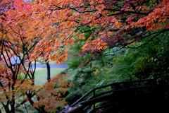 弘前市 藤田記念庭園 (Fujita Memorial Garden) (ansel.ma) Tags: 日本東北 northeasternjapan aomori fujifilmxm1 fujifilmxf35mmf14 青森県 hirosaki 弘前市 藤田記念庭園 fujitamemorialgarden