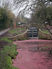Farm Bridge, Monmouthshire-Brecon Canal, Ty Coch, Cwmbran 17 February 2017 (Cold War Warrior) Tags: canal monmouthshirebreconcanal cwmbran azollafiliculoides waterfern