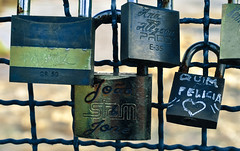 Love padlocks (dantecandal) Tags: park parque brazil love paran brasil amor curitiba padlocks barigi cadeados