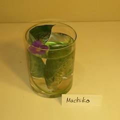 Machiko's water #ikebana