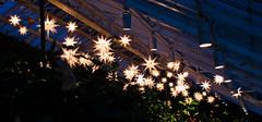 CW299 Christmas at Longwood Gardens (listentoreason) Tags: usa night america canon unitedstates pennsylvania scenic favorites places longwoodgardens ef28135mmf3556isusm holidaylighting score30