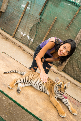 Sandra and the baby tiger