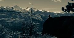 20150501-IMG_5933.jpg (Steve Wundrock) Tags: california mountain tree bird rock landscape steve yosemite developed 2015