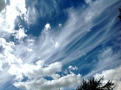 ** Un ciel tonnant...** (Impatience_1) Tags: sky cloud ciel stunning nuage impatience onblue coth fantasticnature tonnant 100commentgroup alittlebeauty coth5 ruby15 ruby20