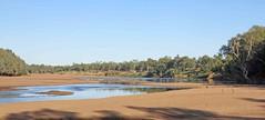 Fitzroy River G1X4777