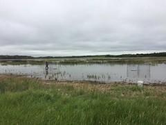 Anglų lietuvių žodynas. Žodis waterfowler reiškia n vandens paukščių medžiotojas lietuviškai.