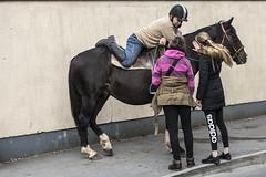A relaxed attitude (Frank Fullard) Tags: frankfullard fullard chat rexaxed talk friends horse jockey street candid ballinasloe horsefair fair galway irish gossip ireland