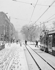. (Out to Lunch) Tags: bad weather snow snowing tram plainpalais geneva switzerland monochrome blackandwhte samsung note 4