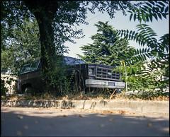 Trieste, Italy. (wojszyca) Tags: mamiya rz67 6x7 120 mediumformat 75mm shift kodak ektachrome e100g gossen lunaprosbc epson v800 car 4x4 chevrolet carspotting trieste tree