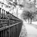 HFF ~ Thanks for Explore (d_russell) Tags: fence hff 365the2017edition niftyfifty ef50mm118 canon5dmarkiii kansascity