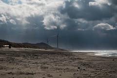Day of the triffids (Dominic Sagar) Tags: fujifilm japan t050 t100 t200 windmill xt1 beach coast sand sea akitashi akitaken jp