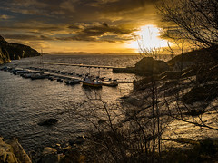 """Sunrise in the harbor"" [Explored] (Terje Helberg Photography) Tags: boat boats clouds cloudscape coast coastal coastalenvironement coastscape dock harbor magic magicmoment moment outdoor outside rocks sea seascape sky sunrise sunscape trees water winter norway hordaland sotra haganes"