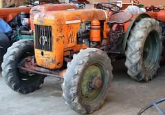 Same DA 25 A DT primissima serie (samestorici) Tags: trattoredepoca oldtimertraktor tractorvintage tracteurantique trattoristorici oldtractor sameda25barca