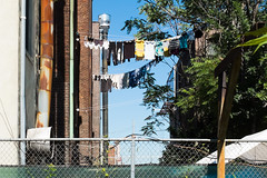 2016 jul-sep misc scenes 5 (Doctor Casino) Tags: washing laundry lines clotheslines drying fence sky apartmentliving