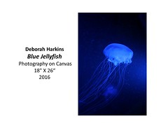 """Blue Jellyfish • <a style=""""font-size:0.8em;"""" href=""""https://www.flickr.com/photos/124378531@N04/32363849551/"""" target=""""_blank"""">View on Flickr</a>"""