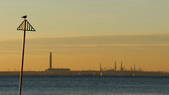 "2017_365018 - Fawley Refinery • <a style=""font-size:0.8em;"" href=""http://www.flickr.com/photos/84668659@N00/32418107205/"" target=""_blank"">View on Flickr</a>"