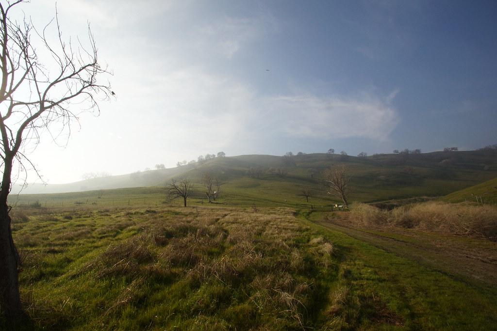 2017-01-31 Contra Loma Regional Park - Take 5 [#3]