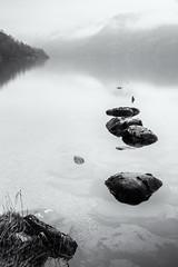 Misty Loch Lomond 2 Mono (amcgdesigns) Tags: andrewmcgavin eos7dmk2 lochlomond rocks reflections reflection silverefex scotland scottishweather loch water dreich mono monochrome blackandwhite landscape misty
