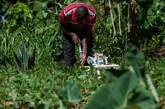 Climate-smart soils: testing soil health in Western Kenya