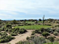 Troon North Pinnacle #9 from tee 397 (tewiespix) Tags: troonnorth golfcourse golf pinnacle phoenix scottsdale arizona