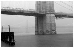 pile bright (beetabonk) Tags: bw newyork rain gray brooklynbridge eastriver agfa apx nikonf3 agfaapx100 agfaapx