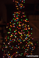 Barely Bokeh (rumimume) Tags: potd rumimume 2016 niagara ontario canada photo canon 80d sigma light tree christmas bokeh holiday glow dark