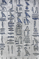 Detail of Hieroglyphs from Wenis' Pyramid (Chris Irie) Tags: hieroglyphs saqqara wenis pyramid egypt
