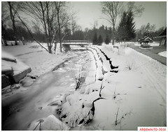 A decent snow fall; last February (DelioTO) Tags: 4x5 aph09 autaut blackwhite canada f250 february landscape natparks ontario panx50 pinhole rural snow toned trails winter woods
