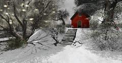Touches of red (Deva Westland) Tags: winter winterlandscape frisland snow ice cold alone sparkle light