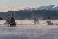 Statter Big Boats 3342 (Gillfoto) Tags: aukebay harbor alaska juneau boats winter mist fog cold statterharbor