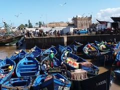 Essaouira (www.marrakechviajes.com) Tags: merzouga marruecos viajes rutas todoterreno marrakech aventuras travels tours morocco 5days 3daysmarrakech from fes casablanca chefchaouen tanger agadir desert comeltrekking