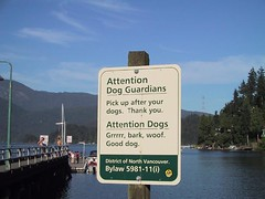 Attention Dog Guardians / Dogs