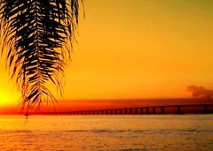 Bridge Over Troubled Water (neloqua) Tags: ocean bridge light sunset sea summer brazil sun sunlight beach southamerica water beautiful riodejaneiro wonderful wonder amazing fantastic perfect colorful great sunny excellent summertime moment lovely charming magical sunsetlight shining niteroi sunnyday