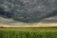 clouds over corn (Doug Stremel Photo) Tags: cloud storm field rain weather clouds corn kansas thunderstorm agriculture storms badweather severe thunderstorms severeweather dougstremel kansasthunderstorm kansasthunderstorms