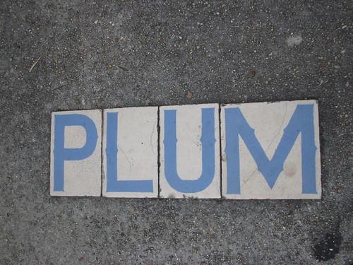plum st.