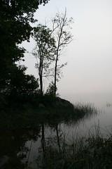 trees (eva8*) Tags: mist tree water fog wow river maine foggy lookatme gardiner eva8 mc05negativespace