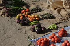vegetables at suq salamat 3 (David Haberlah) Tags: manasir mainland suq salamat sudan fourth nile cataract 4thcataract tribe relocation daralmanasir