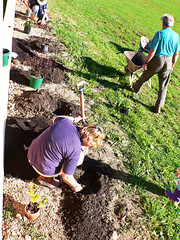 planting the garden
