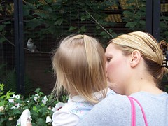 Amy and Mira check out the kookaburra (sMoRTy71) Tags: zoo louisvillezoo louisville kentucky september17th 2005