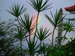 Belo começo de dia... (SantaRosa OLD SKOOL) Tags: brazil home brasil riodejaneiro arcoiris ilhadogovernador lindo ilha governador 21092005 rep224