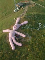 Really BIG Pink Bunny Rabbit... (S.D.) Tags: pink bunnyrabbit