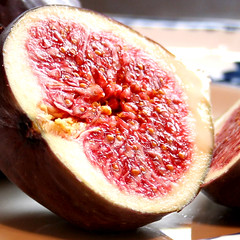 Figs for lunch 4
