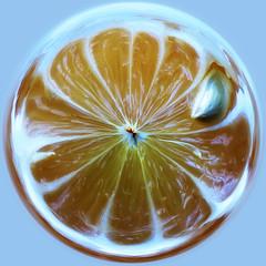 inside-out citrus - by Dawn Endico