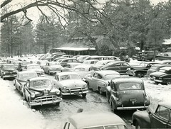 Early 1950s Cars