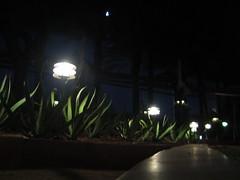 Pathways Illuminated (crume) Tags: light arizona phoenix night lights downtown az unfound illuminated nighttime canong5 pathway datenight